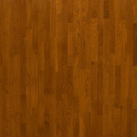 Паркетная доска Focus Floor Дуб PONIENTE