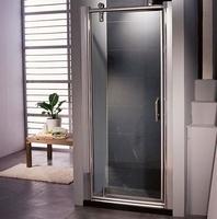 Душевая дверь в нишу Appollo TS-0507D