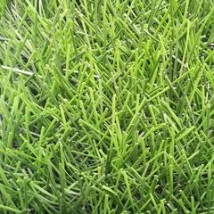 Искусственная трава Bellinturf Bellin-Evolution 40 мм