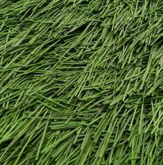Искусственная трава Bellinturf Bellin-Evolution 50 мм