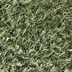 Искусственная трава Orotex Astra