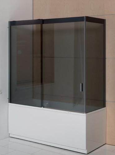 Душевaя стенкa для ванны Balteco Forma 1700 прозрачное стекло, в нишу прозрачное стекло, в нишу