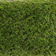 Искусственная трава Oryzon Grass Grassland
