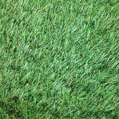 Искусственная трава Confetti Jakarta